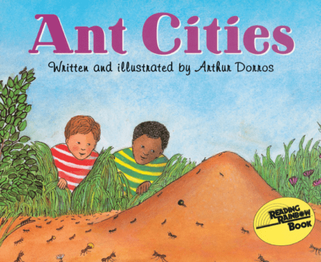 Ant Cities.jpg